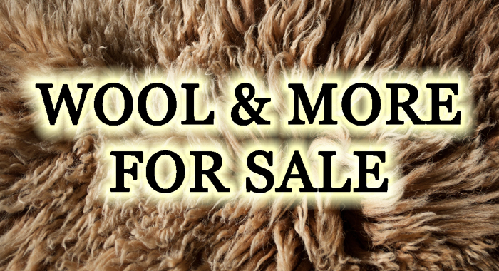 Wool & More for sale at Dot Ranch